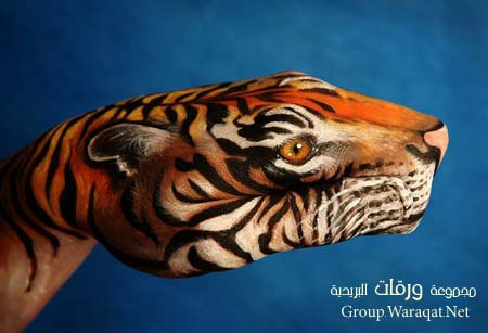 Amazing Finger Paintings18   صور : لوحات مدهشة بالأصابع ..!!