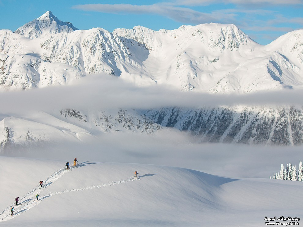 Group backcountry skiing at Hope Creek, BC, Canada