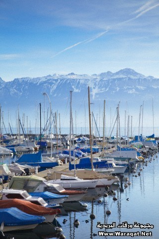 Ouchy harbour, Lausanne, Vaud, Switzerland, Europe