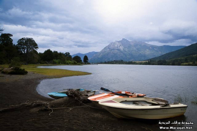 Landscape at Lago Paimun, Lanin National Park, Patagonia, Argentina, South America