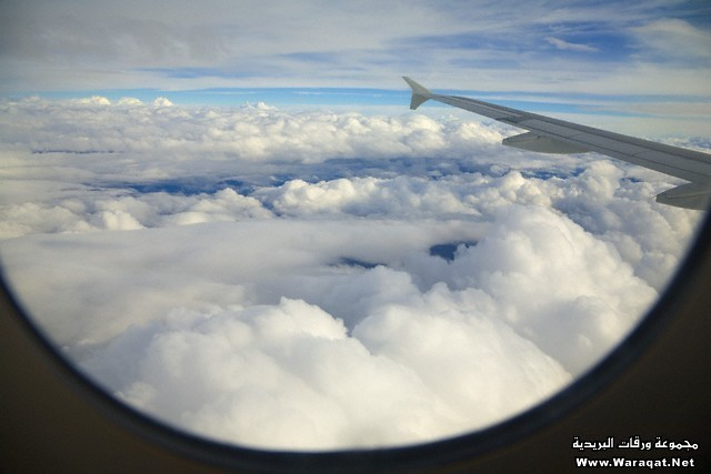 Cumulus Clouds Beneath Plane's Wing