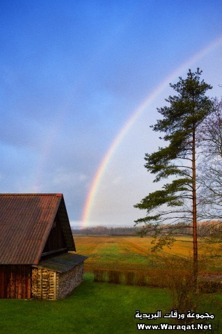 Rural scene, a rainbow in the sky, after rain.