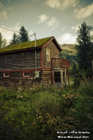 Wooden home in Alaskan countryside