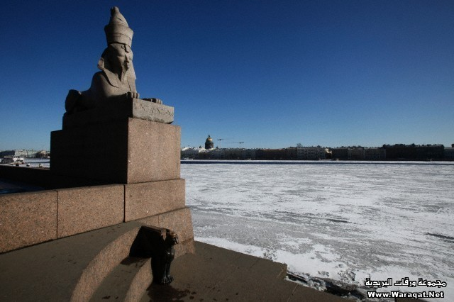 Sphinx statue on bank of Neva river. Saint Petersburg. Russia.