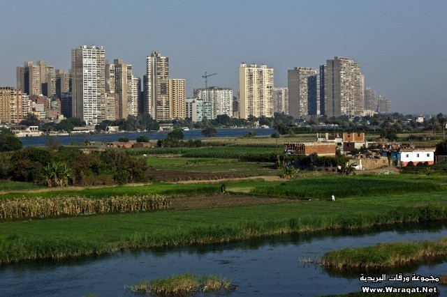 Maadi neighborhood buildings on river Nile, Cairo, Egypt
