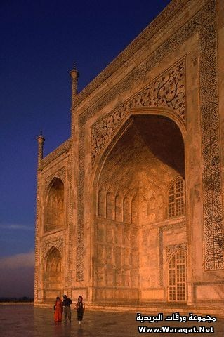Detail of Walls of The Taj Mahal