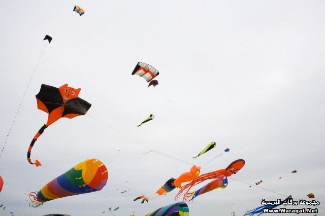 Colorful kites flying in the wind