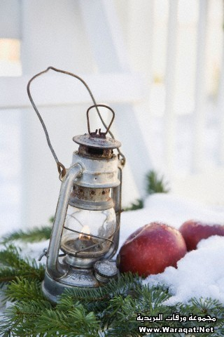 Close-up of lantern and apples