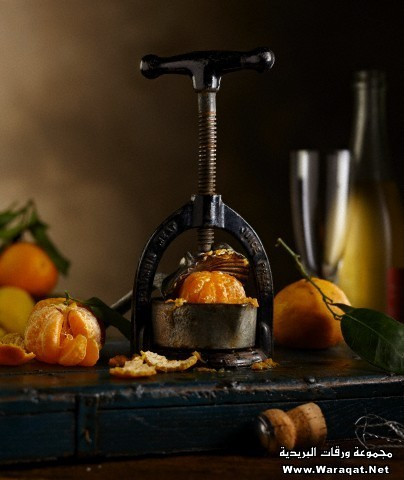 Tangerines and Juicer