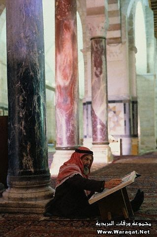 Man Studying the Koran in Al Aksa Mosque