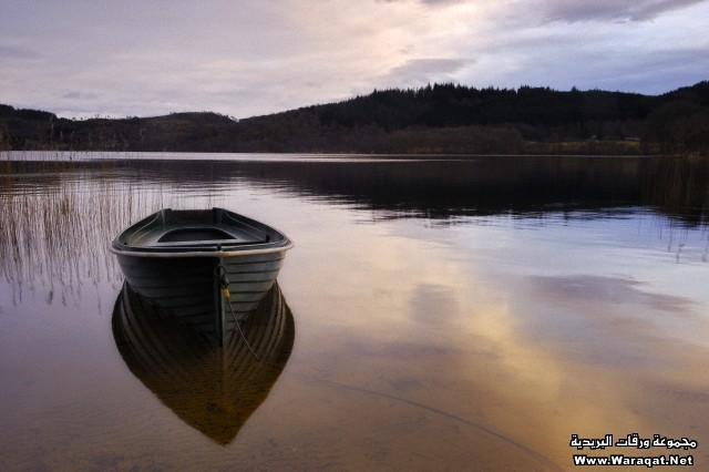Rowboat tied up on shore, Loch Ard, Scotland