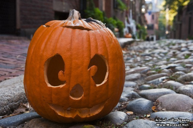Close-up of a Jack O' Lantern, Acorn Street, Beacon Hill, Boston, Massachusetts, USA