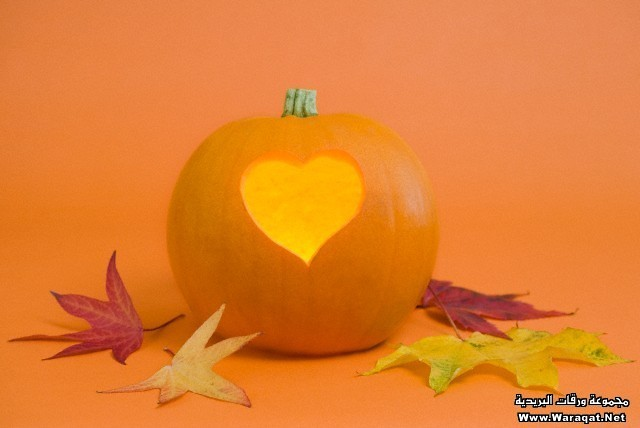 Pumpkin with heart-shape lit from inside