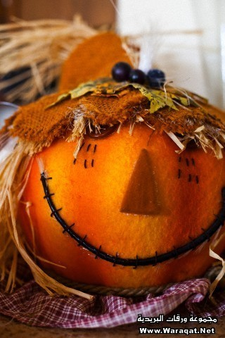 Close-up of a Jack O' Lantern