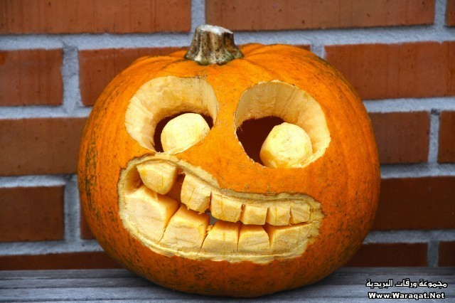 Close-up of a Jack-o'-lantern on Halloween day against brick wall