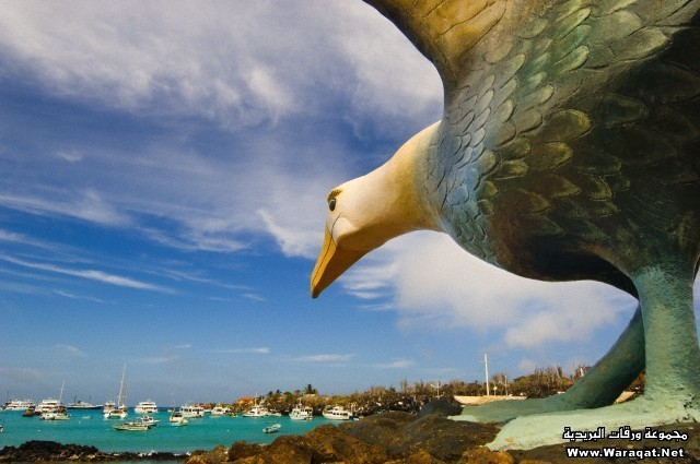 Albatross statue at a harbor