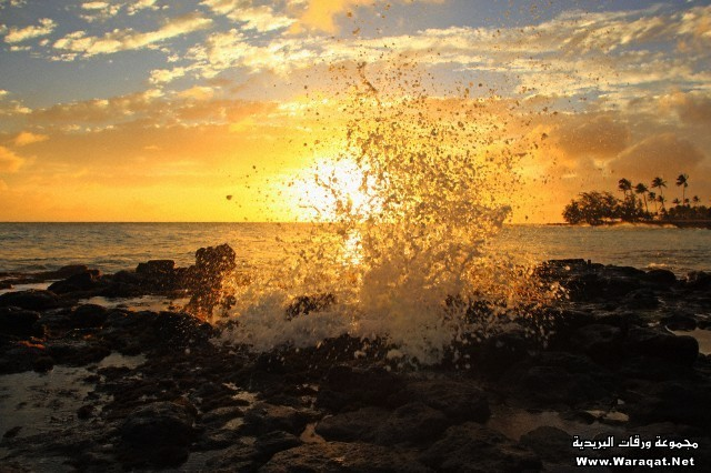 Waves crashing on rocky beach at sunset