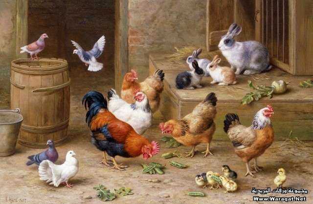 Farmyard Friends by Edgar Hunt