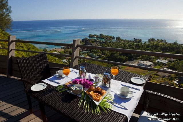 France, French Polynesia, Society Archipelago, Windward Islands, Moorea, Legend resort villas, table for breakfast