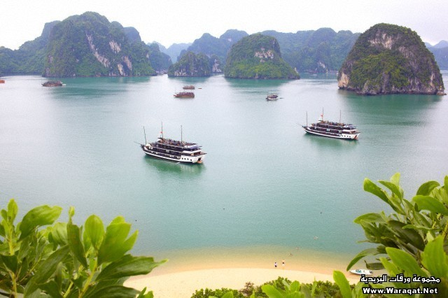 Junk boats and ships in Ha Long Bay surrounded limestone Karsts.